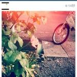 instagram_lastcamera