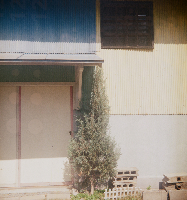 RICOHFLEX model Ⅲ×Lomography Color Negative 100 120